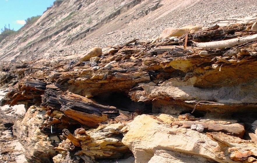 Деревянные горы Земель Ледовитого океана